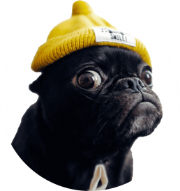eclipse design pug mascot